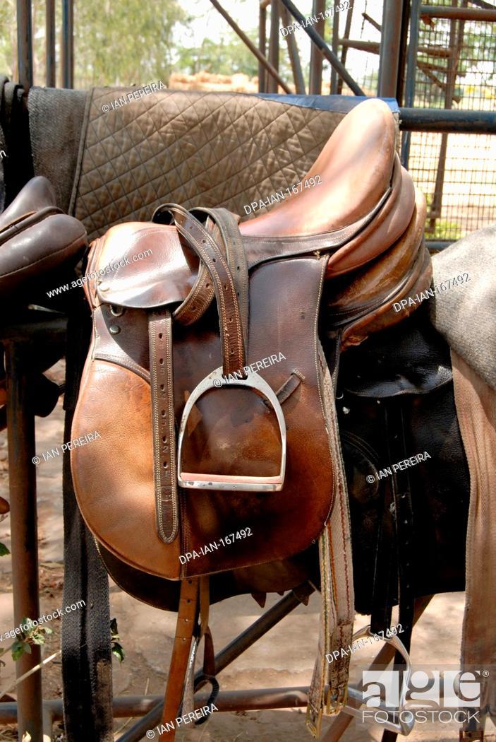 Horse Riding Gear 2008 Foto De Stock Imagen Derechos Protegidos Pic Dpa Ian 167492 Agefotostock