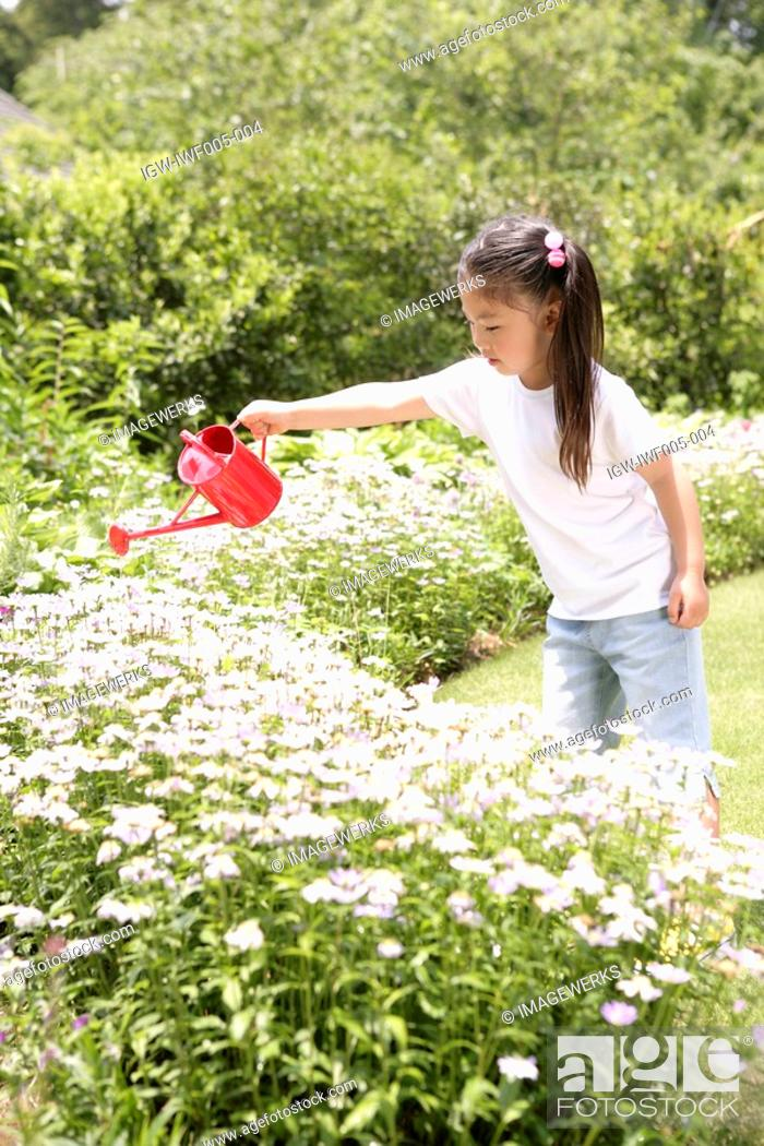 Stock Photo: A young girl watering the flowers in the garden.