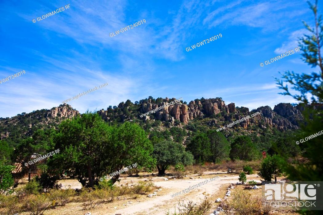 Stock Photo: Trees in front of rock formations, Sierra De Organos, Sombrerete, Zacatecas State, Mexico.