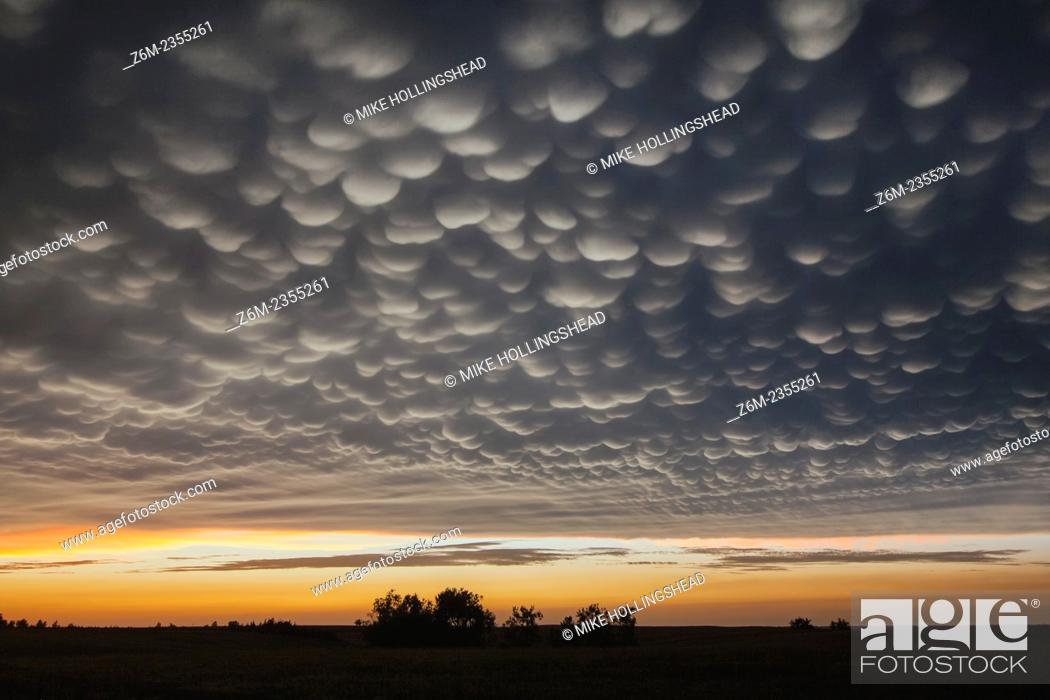 Stock Photo: Intense mammatus form over eastern Nebraska behind a line of storms.
