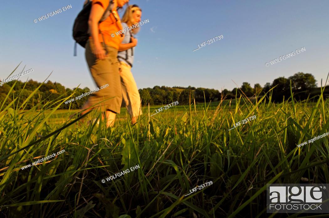 Stock Photo: Two women hiking in an idyllic landscape, Franconian Switzerland, Bavaria, Germany, Europe.