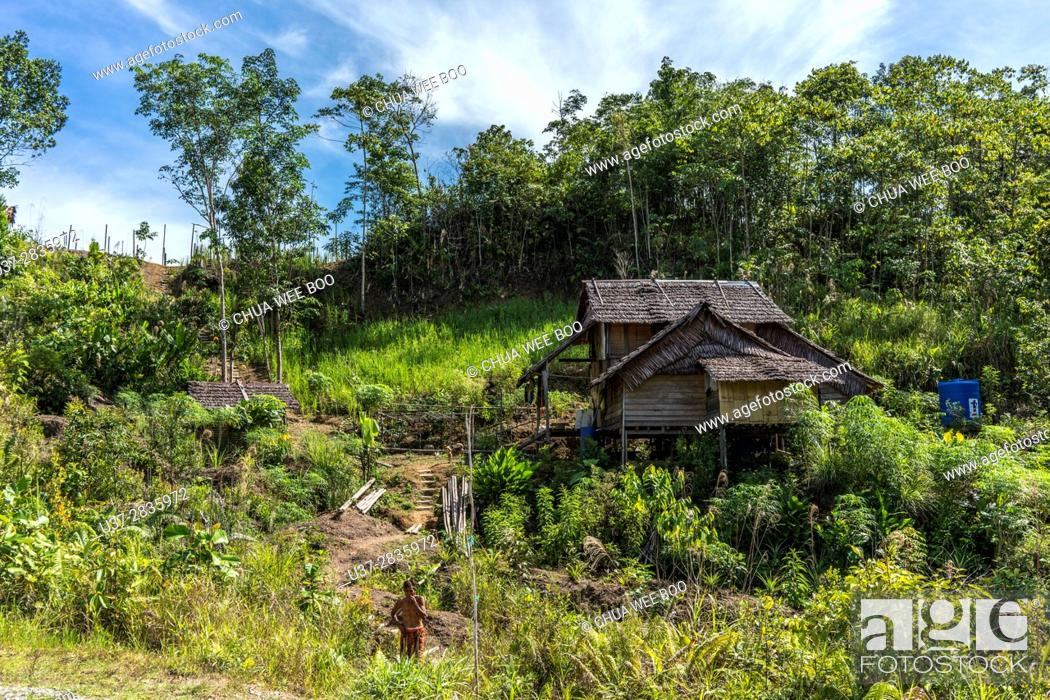 Stock Photo: A Bidayuh houses in Kampung Gumbang, Bau, Sarawak, Malaysia.