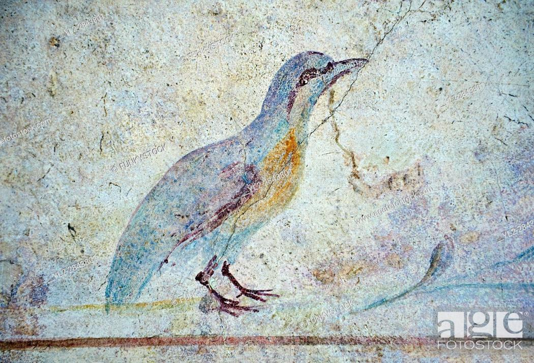 Imagen: Roman Fresco of an exotic bird from The Large Columbarium in Villa Doria Panphilj, Rome. A columbarium is usually a type of tomb with walls lined by niches that.