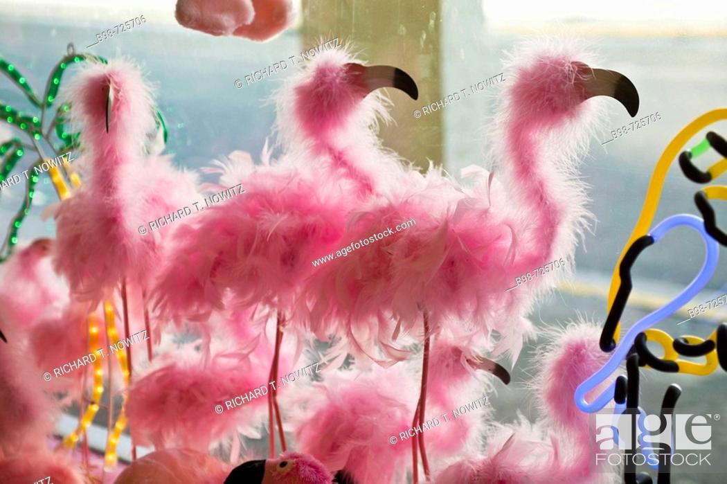 Stock Photo: Pink feather Flamingos in a gift shop window.