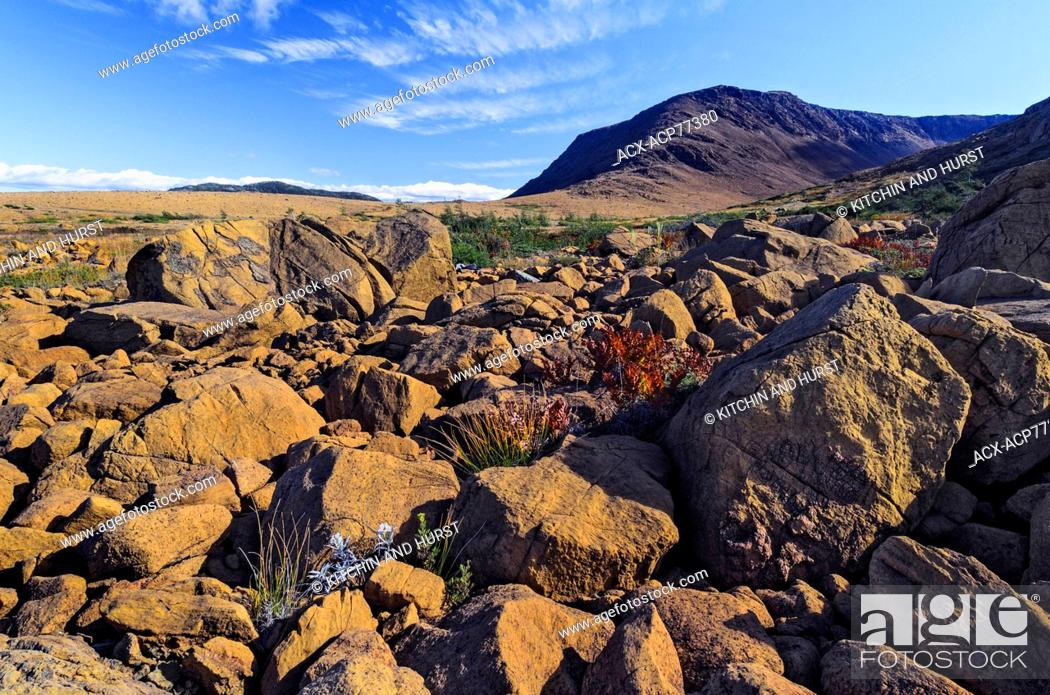 Stock Photo: TABLELANDS. Peridotite rock is rare at earth's surface and reason for World Heritage Site designation by UNESCO. Gros Morne National Park, Newfoundland.