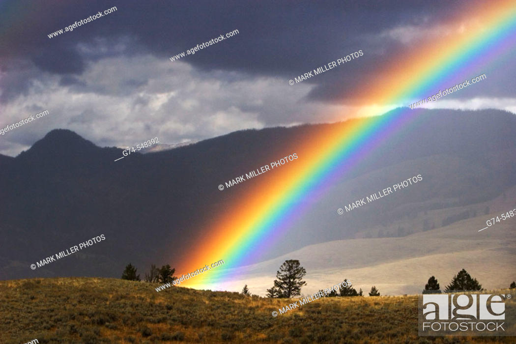 Stock Photo: An afternoon rainbow in Yellowstone National Park, Wyoming. USA.