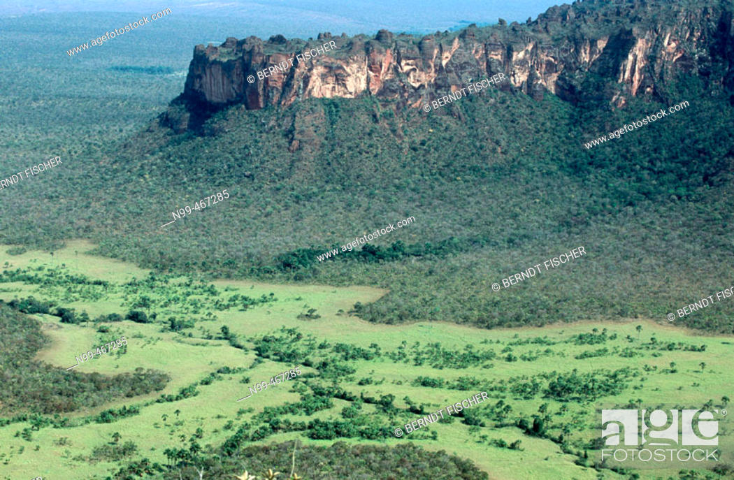 Stock Photo: Sandstones cliffs primeval dry forest and open grassland. Chapada do Guimaraes National Park. Mato Grosso. Brazil.