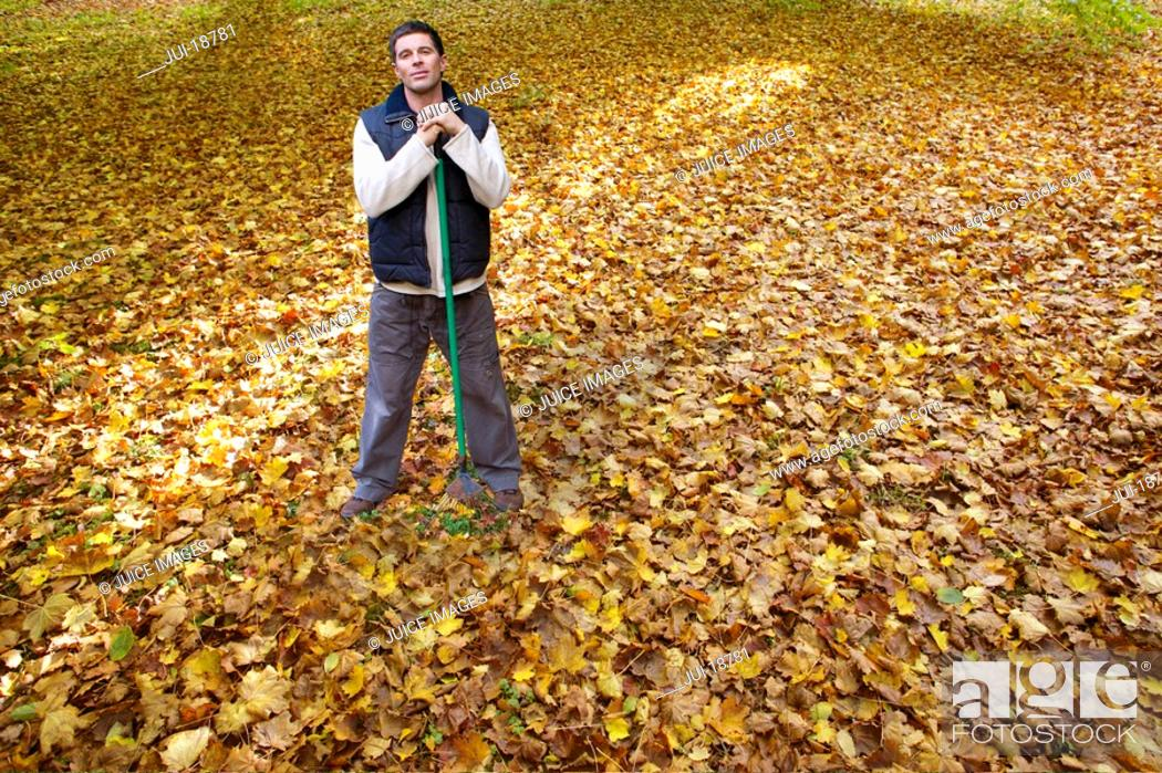 Stock Photo: Portrait of man with rake standing in autumn leaves.