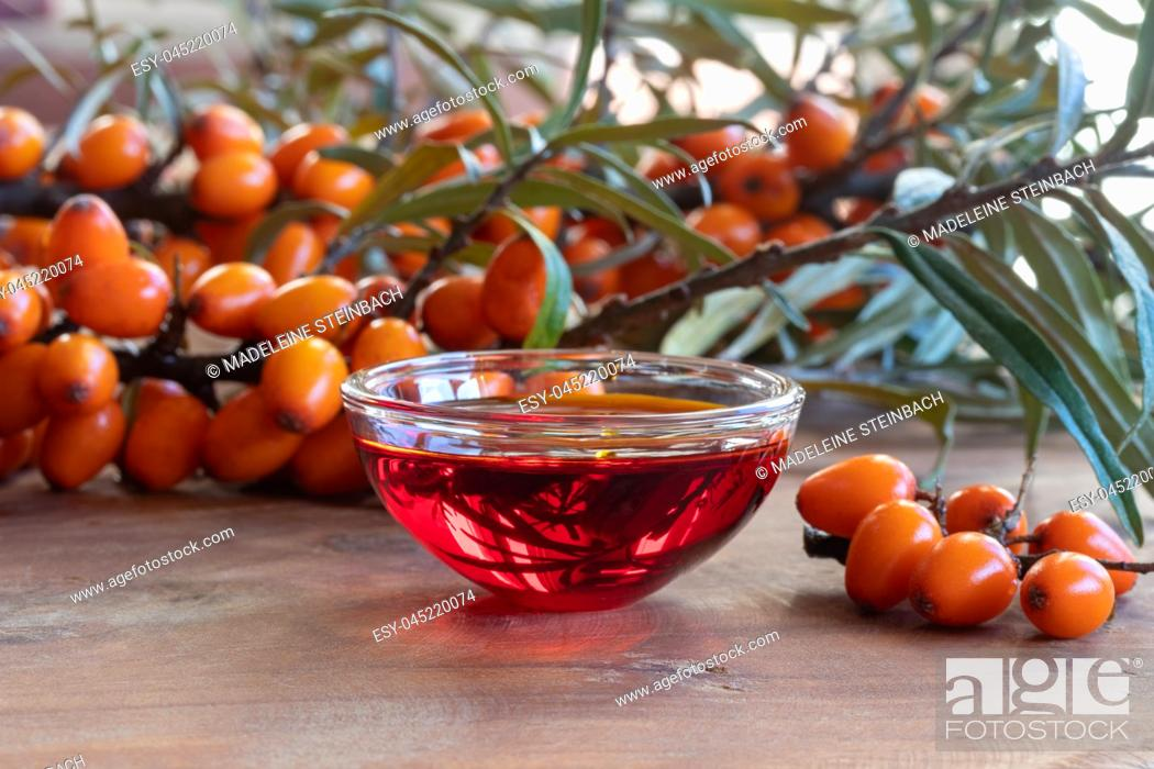 Stock Photo: Sea buckthorn oil in a bowl with fresh berries.