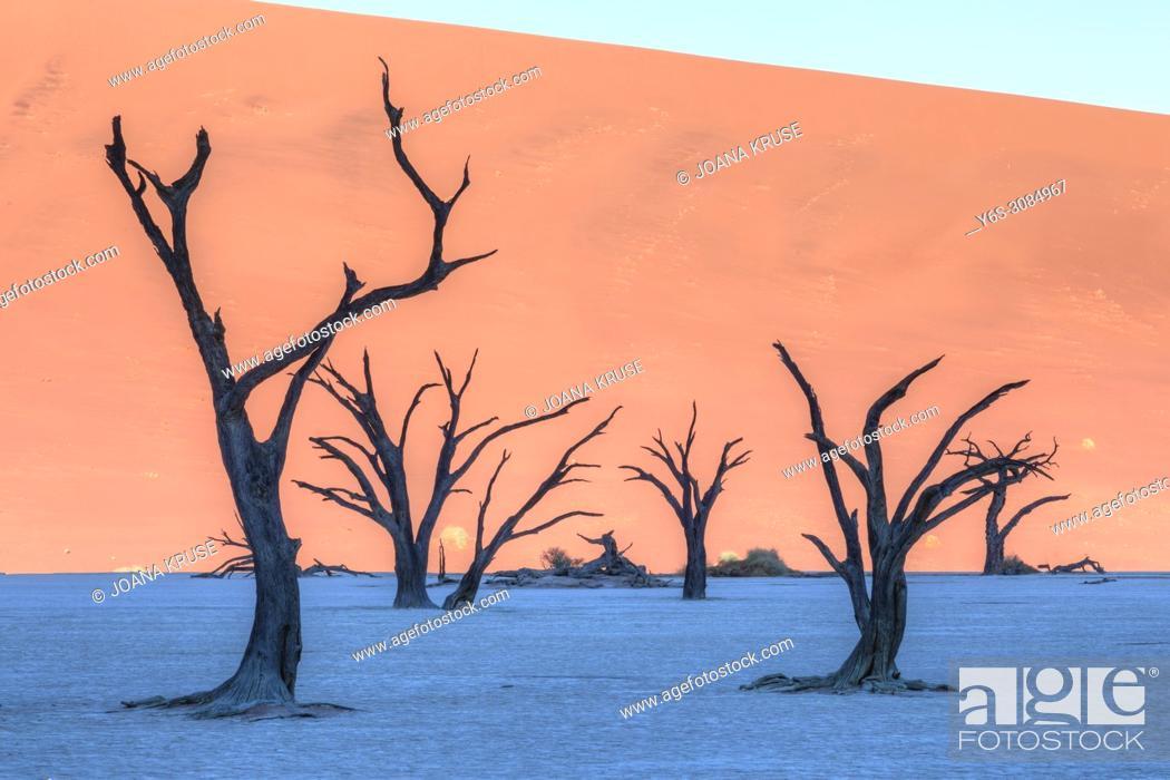 Stock Photo: Sossusvlei, Namib desert, Namibia, Africa.