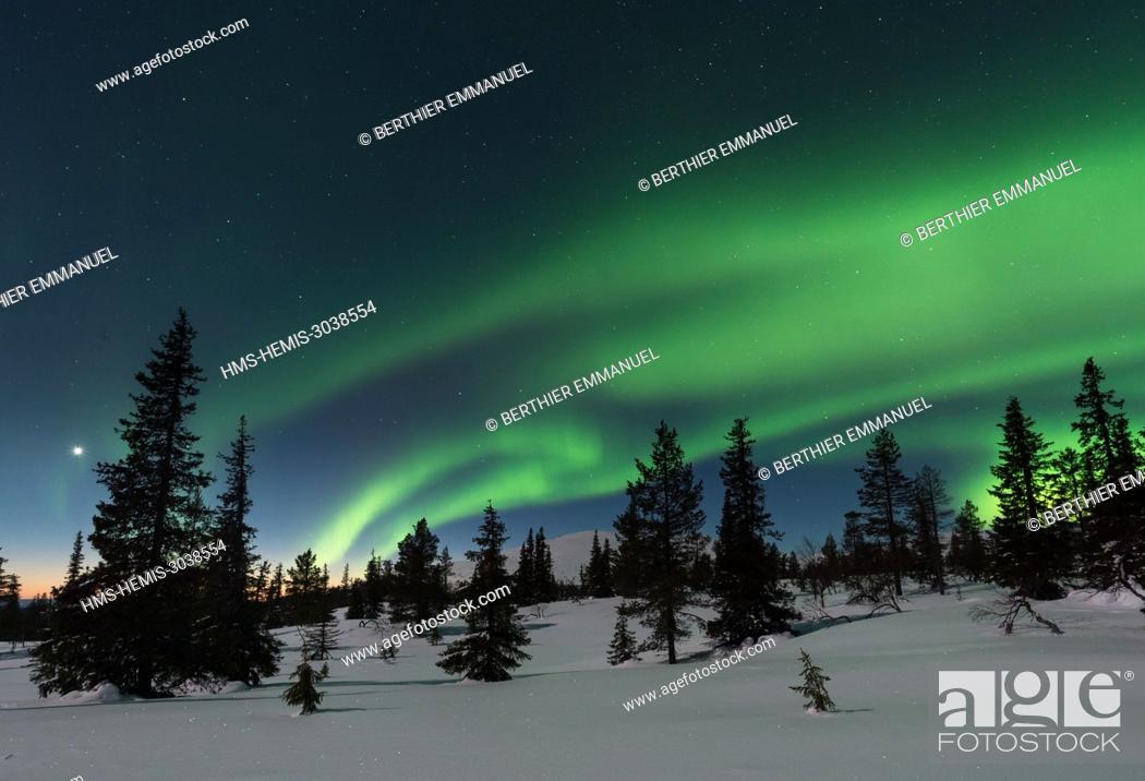 Stock Photo: Finland, Lapland, Muonio, northern light above Pallas-Yllästunturi nationalpark.