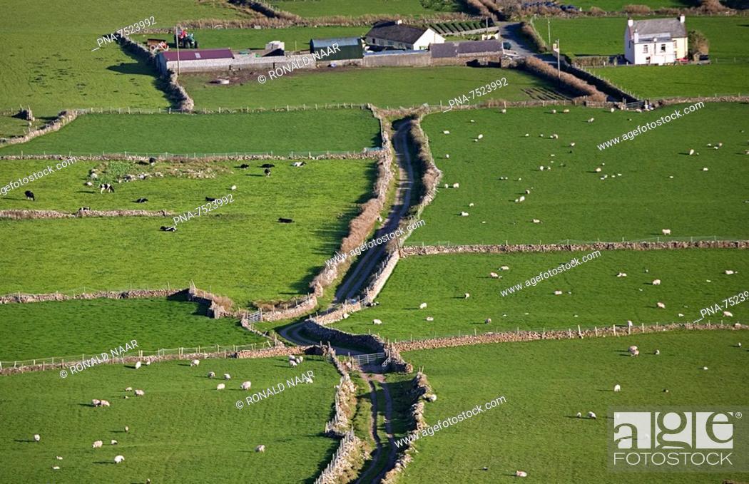 Stock Photo: on the Irish penninsula Dingle, SW Ireland.