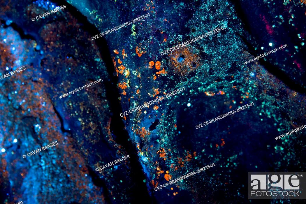 Imagen: Microbial organisms under ultraviolet light inside of a lava tube cave.
