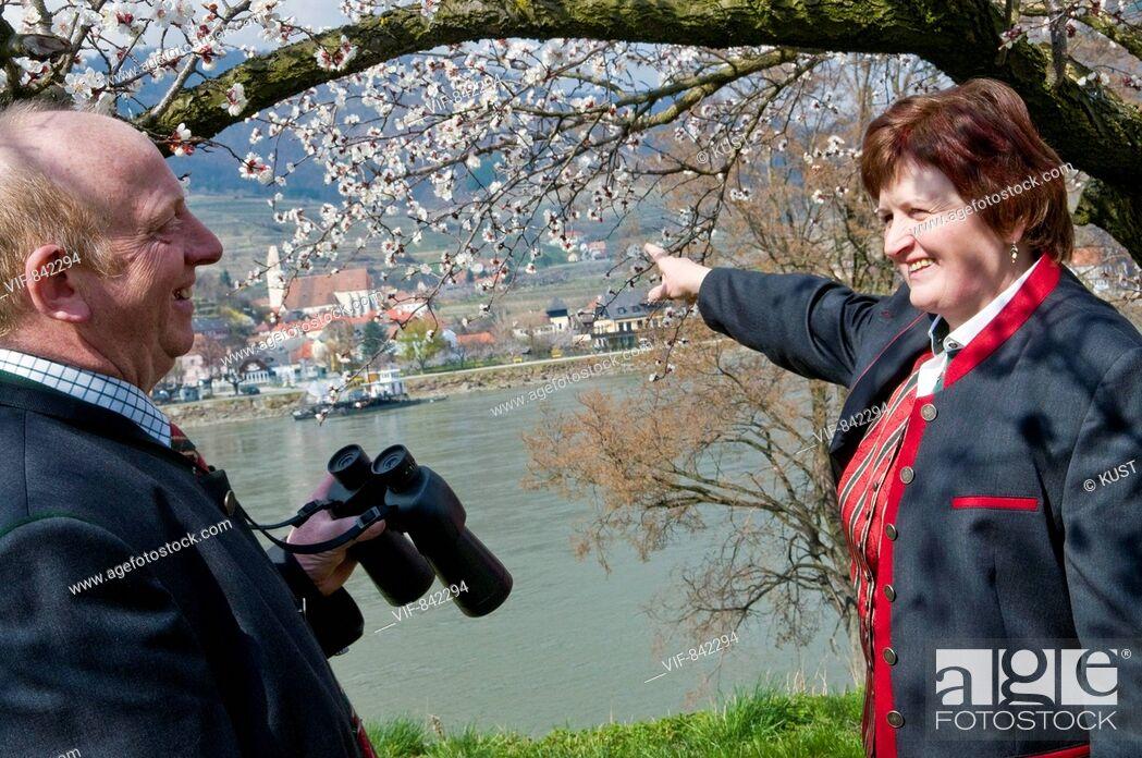 Imagen: Wachau zur Marillenbluete - Weltkulturerbe Wachau, Nieder÷sterreich, Ísterreich, 23/03/2008.
