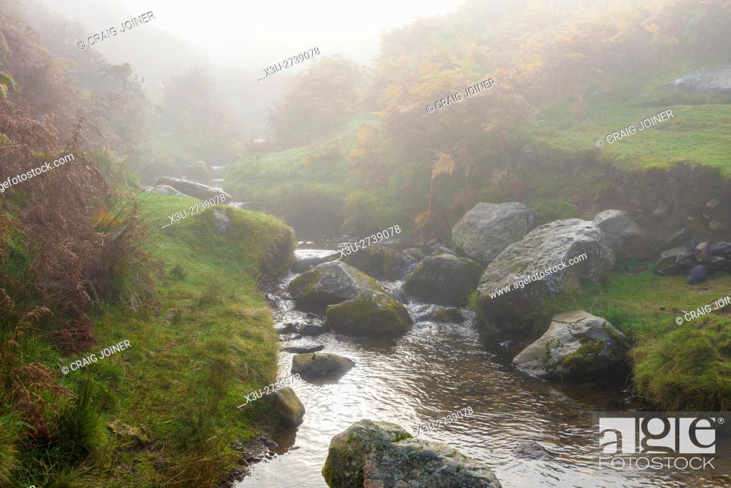 Stock Photo: Mist over Aik Beck on Barton Fell in the Lake District National Park. Cumbria. England.