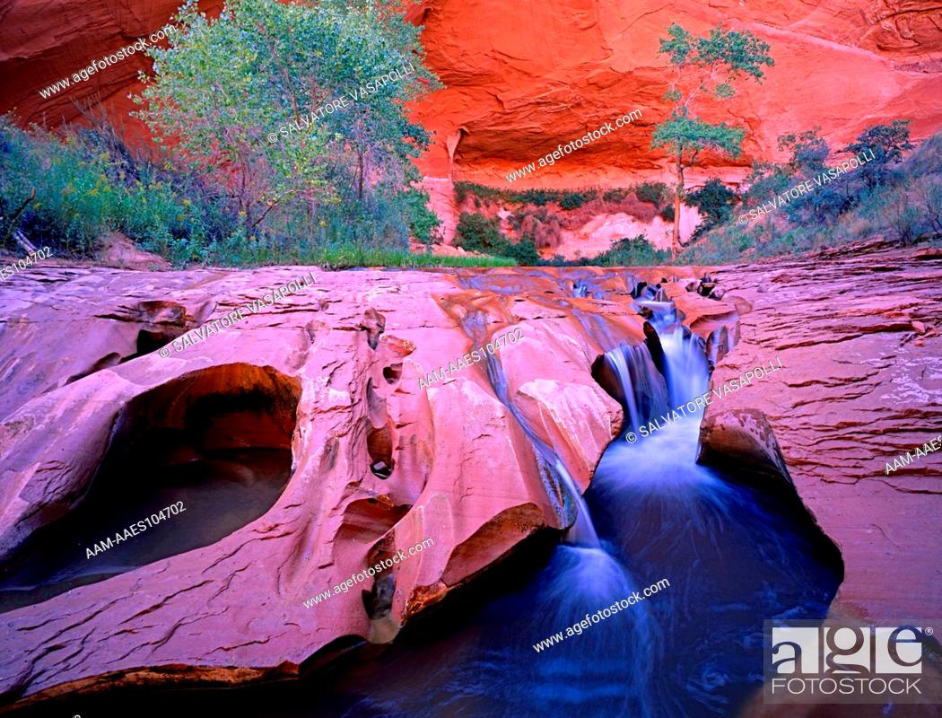 Stock Photo: A Fluted falls on Coyote Creek flows out from an Amphitheater in Coyote Gulch Canyon, Glen Canyon National Recreation Area, Kane County, Utah.