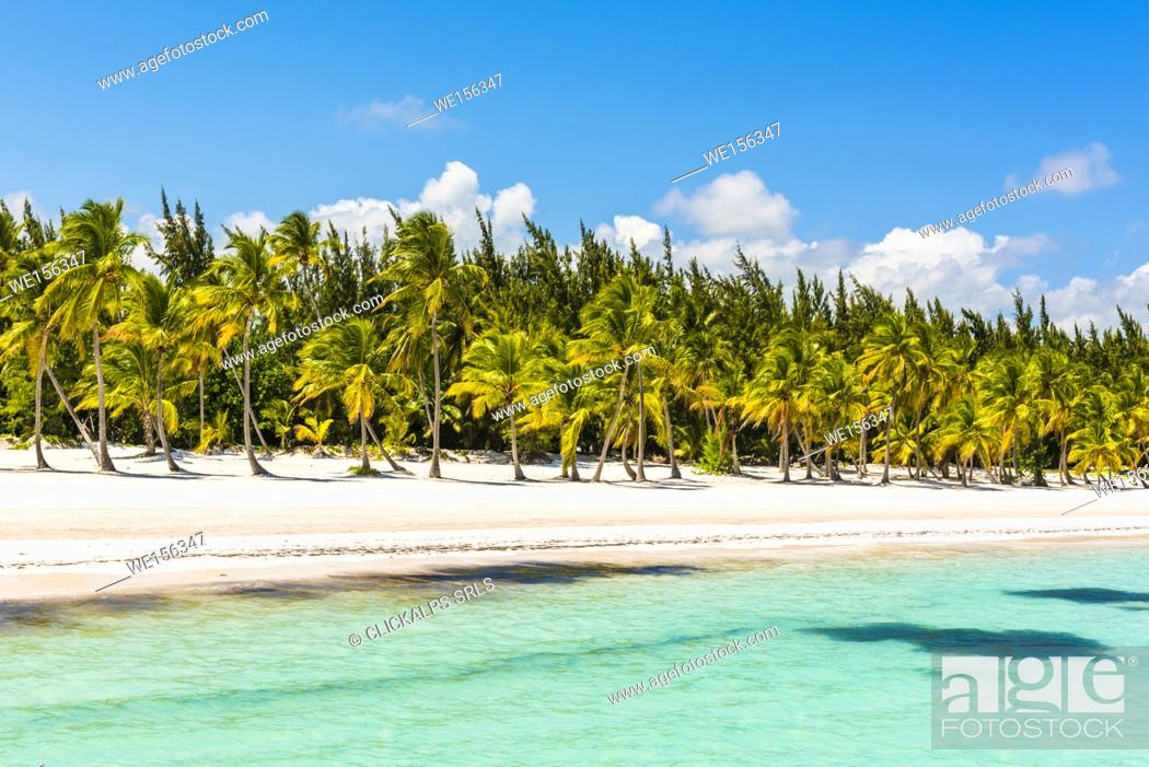 Stock Photo Juanillo Beach Playa Punta Cana Dominican Republic