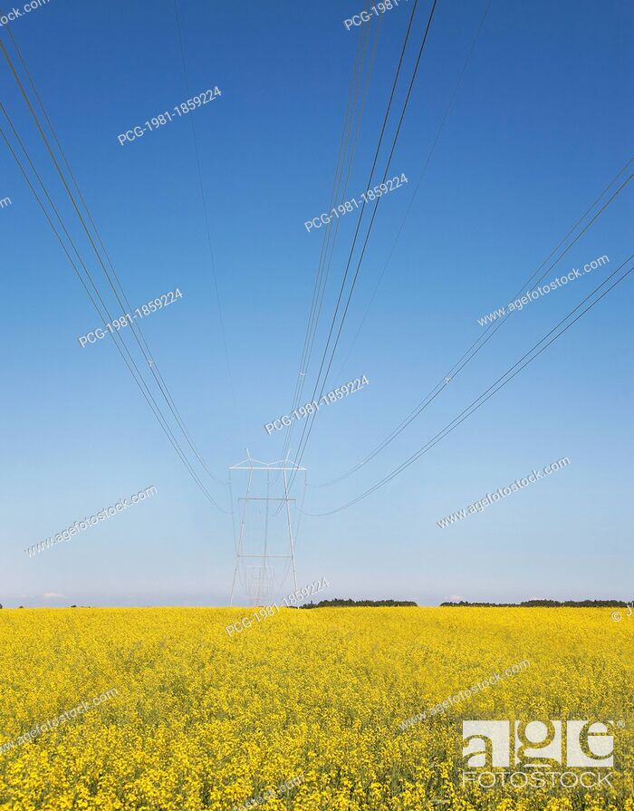 Stock Photo: Transmission Towers and Power Lines.