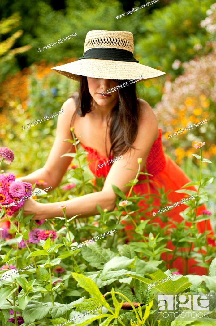Photo de stock: 25 year old brunette woman in a garden settng wearing a dress and a straw hat cutting flowers for a bouquet.