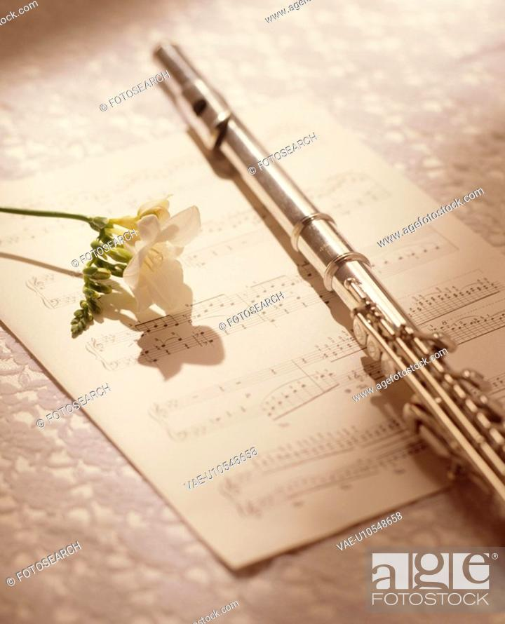 Stock Photo: A Score And A Flute.
