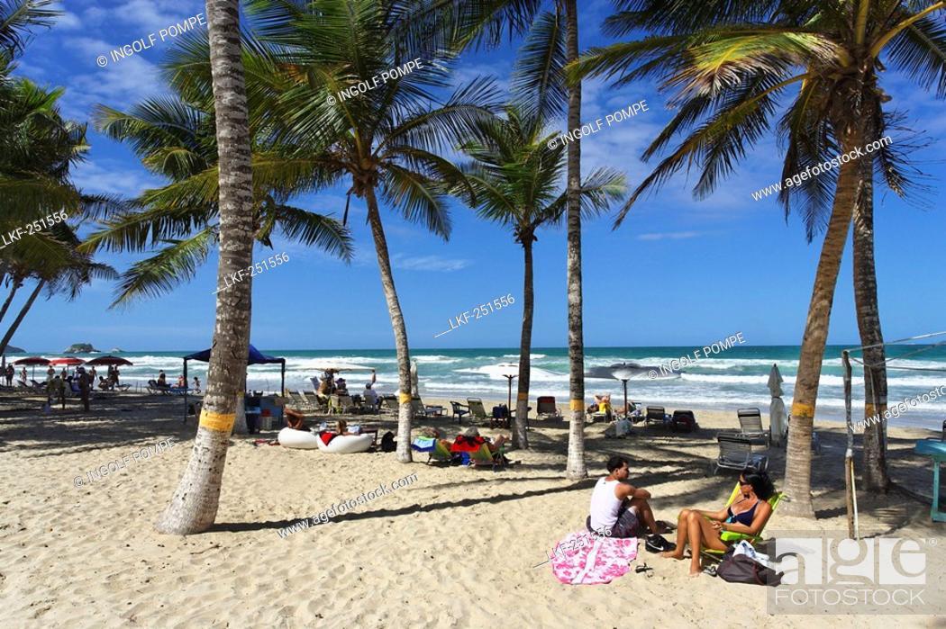 Stock Photo: Palm trees at Playa El Aqua, Isla Margarita, Nueva Esparta, Venezuela.