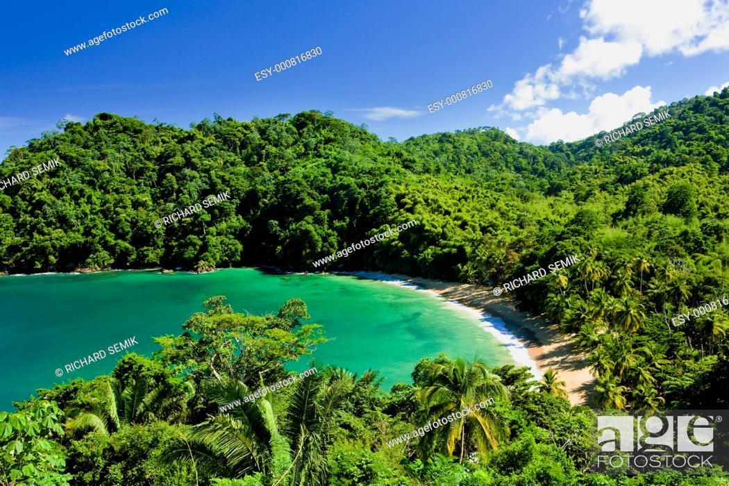 Stock Photo: Englishman''s Bay, Tobago.