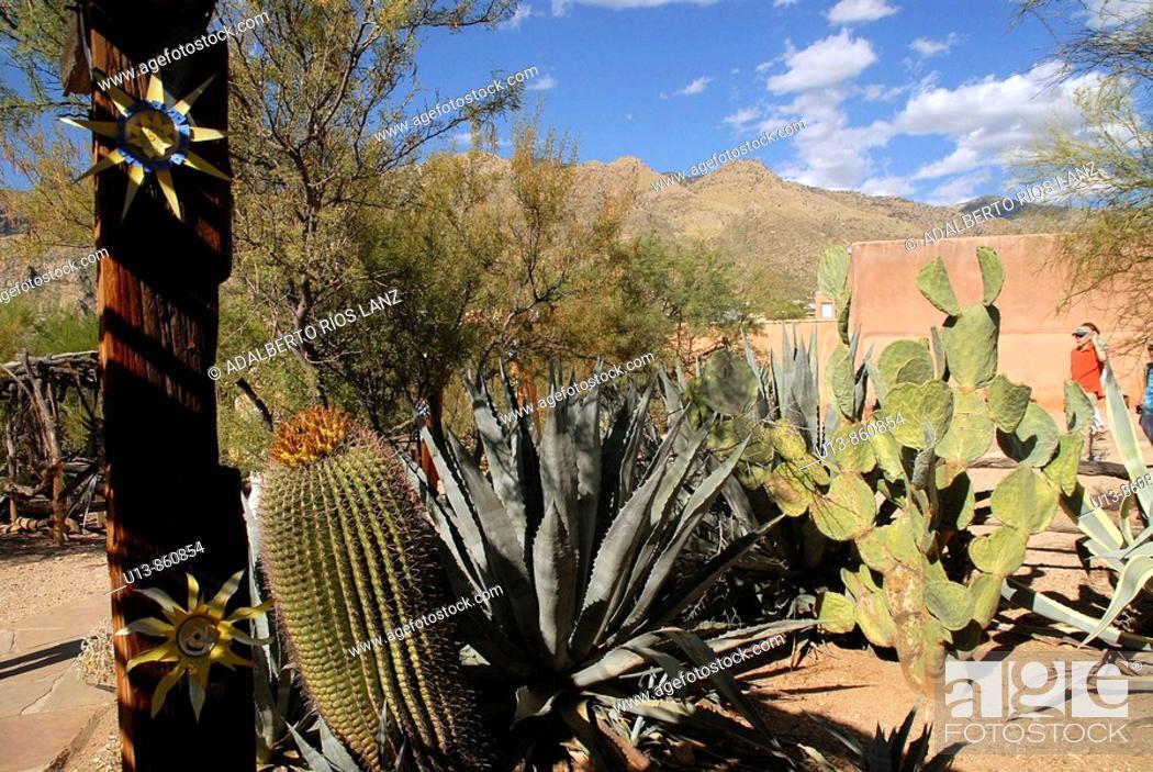 Stock Photo: De Grazia Gallery In The Sun, Cacti Garden, Tucson, Arizona, United States.