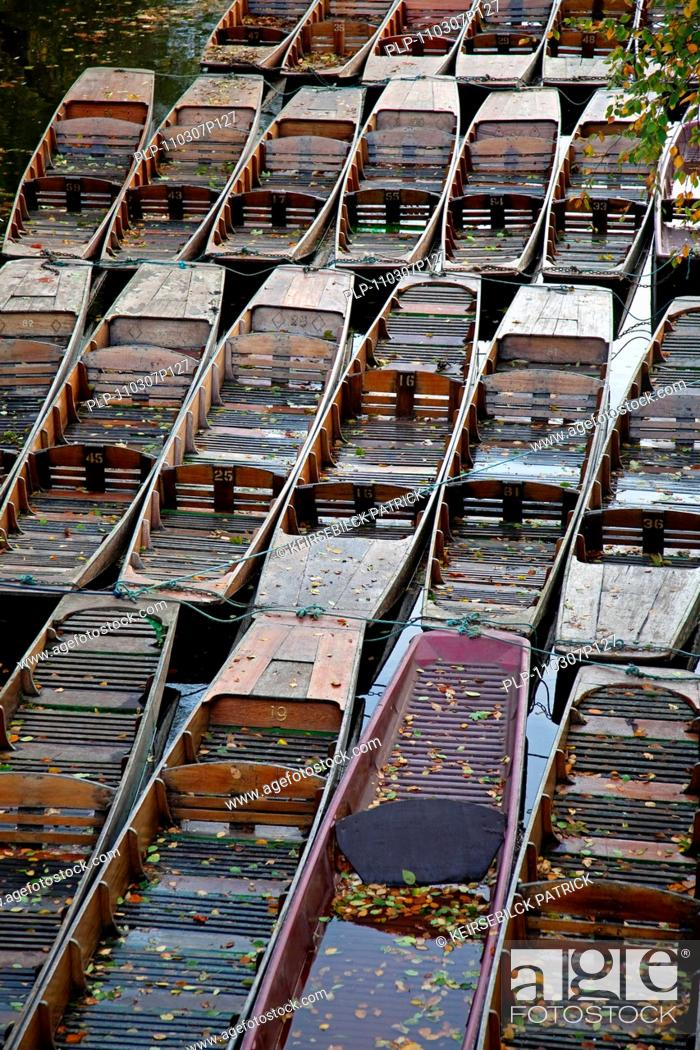 Stock Photo: Rows of boats at Magdalen College of the Oxford University, Oxfordshire, England, UK.
