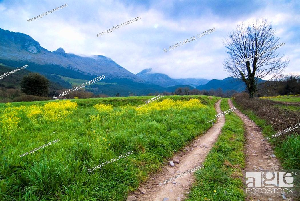 Stock Photo: Rural landscape, Ramales de la Victoria, Cantabria, Spain.