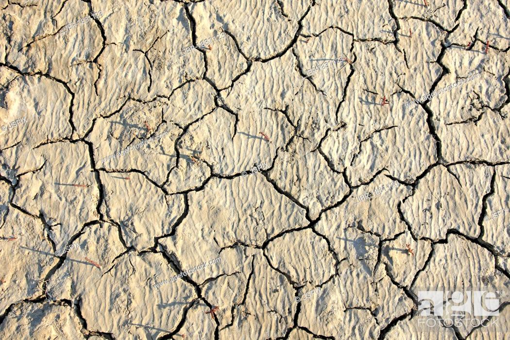 Stock Photo: Parched soil surface, Saintes-Marie-de-la-Mer, Bouches du Rhone, Camargue, France, Europe.