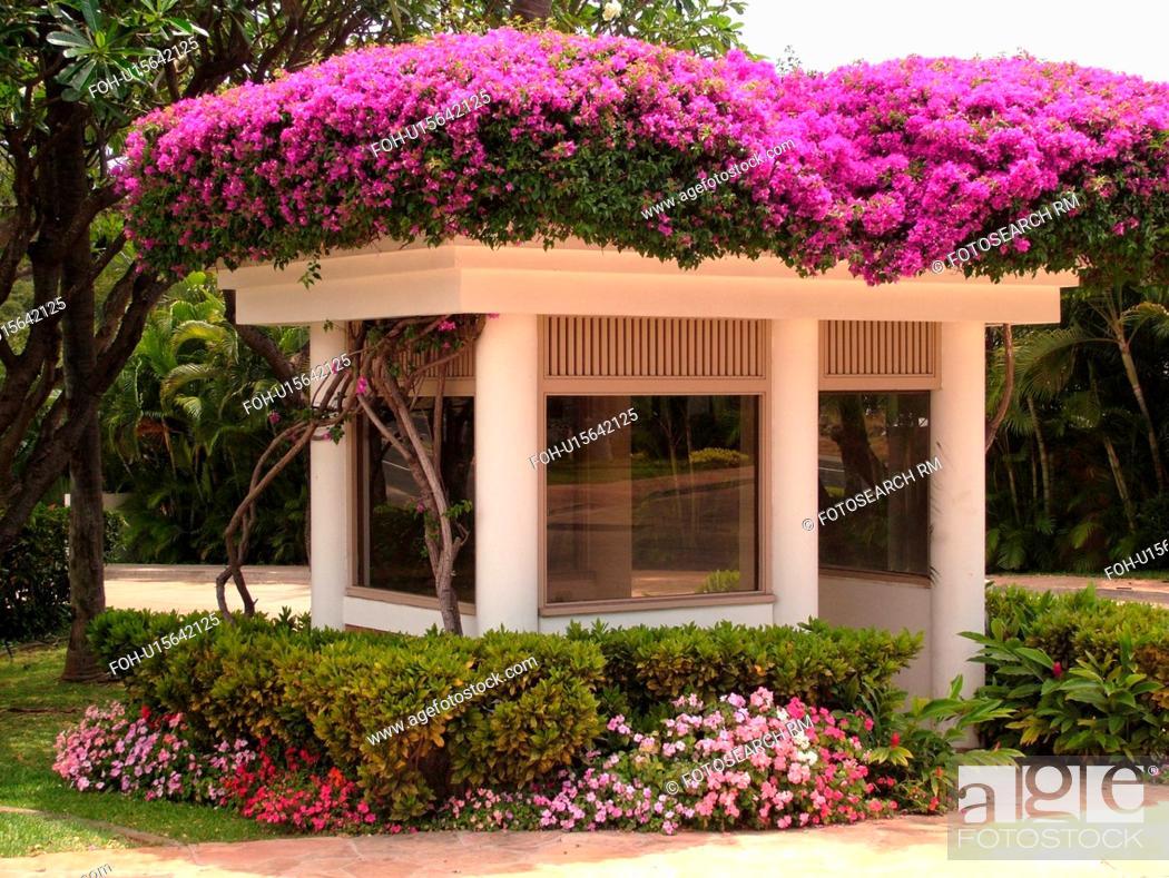 Stock Photo: Wailea, Maui, HI, Hawaii, Wailea Point, Renaissance Wailea Beach Resort.