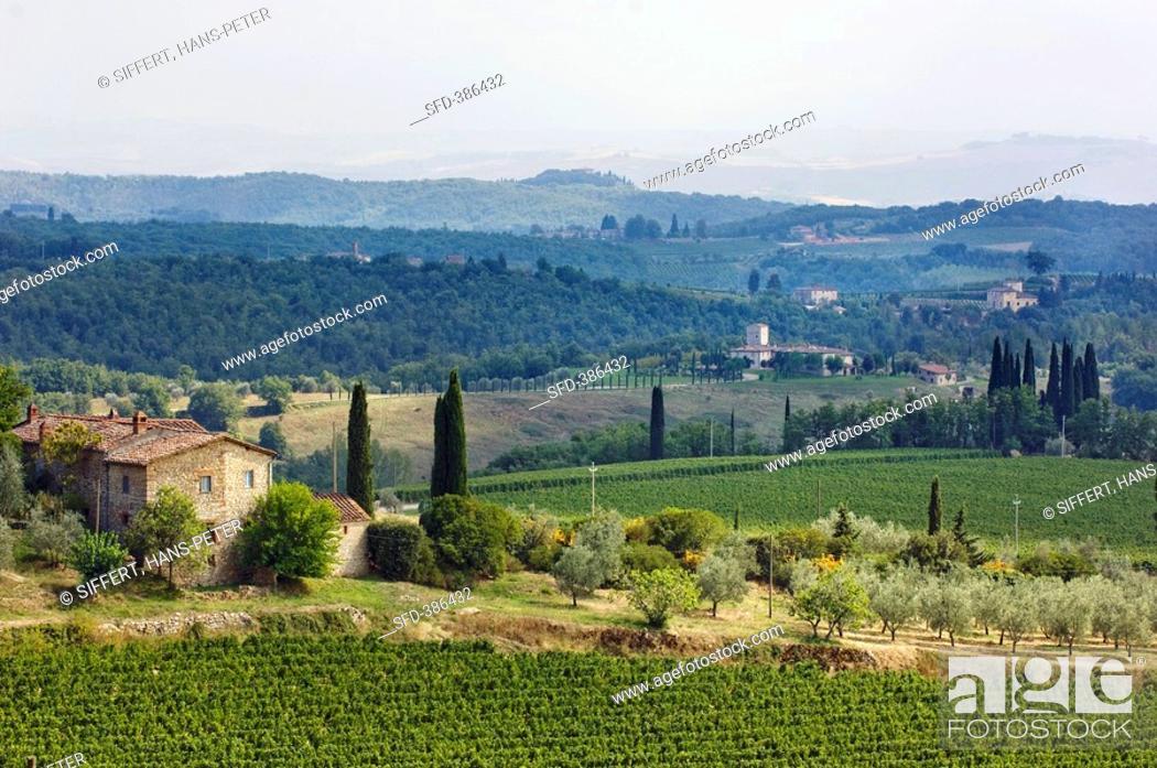 Imagen: Landscape: podere, monti, Castelnuovo Berardenga, Tuscany, Italy.