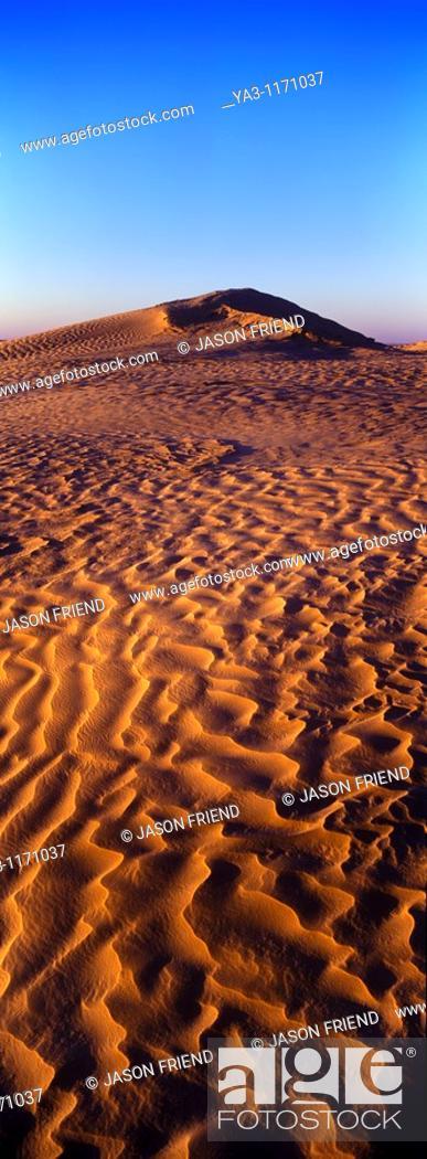 Stock Photo: TUNISIA, Zaafrane, Sahara Desert  Morning light illuminates the patterns of the sand dunes of the great erg oriental.