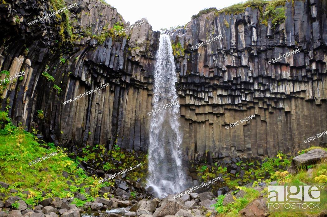 Stock Photo: Basaltic columns at Svartifoss, Iceland.