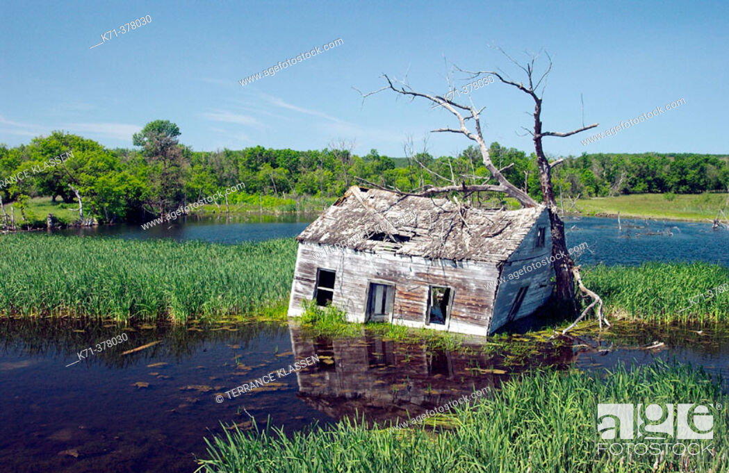 Imagen: An abandoned flooded cottage near Kelwood, Manitoba. Canada.