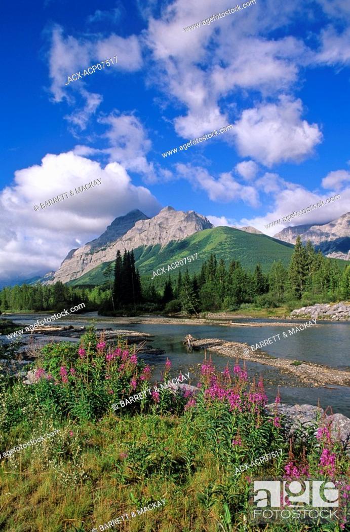 Stock Photo: Kananaskis River and Mount Kid in Kananaskis Provincial Park, Alberta, Canada.