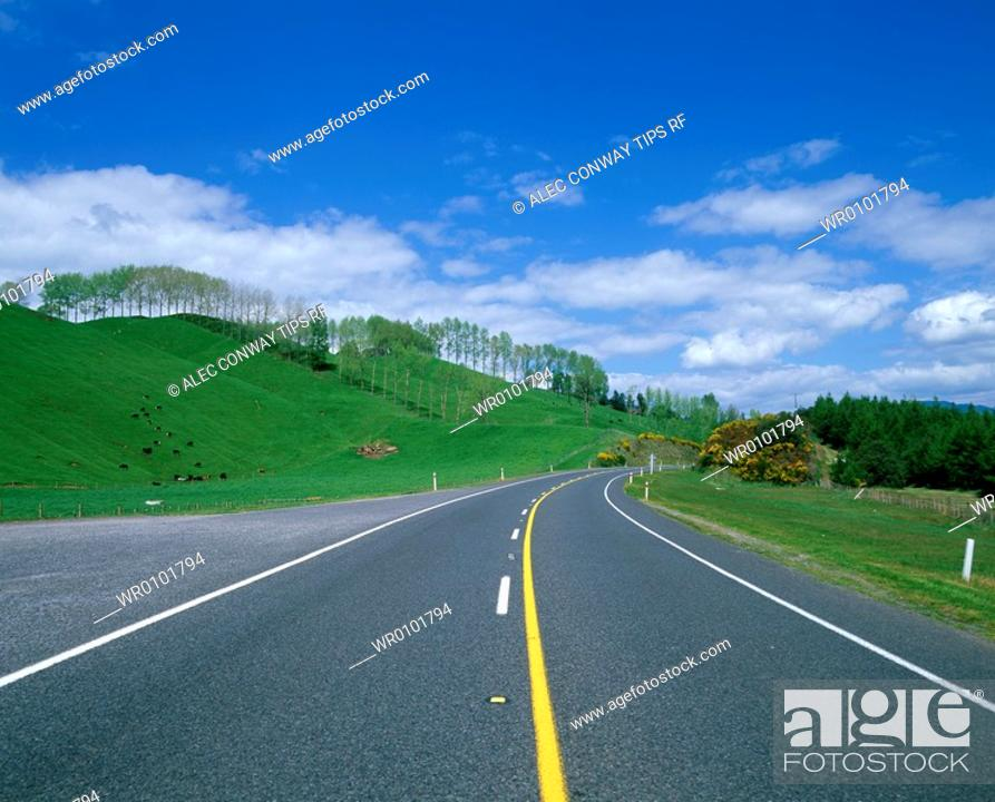 Stock Photo: New Zealand, North Island, road.