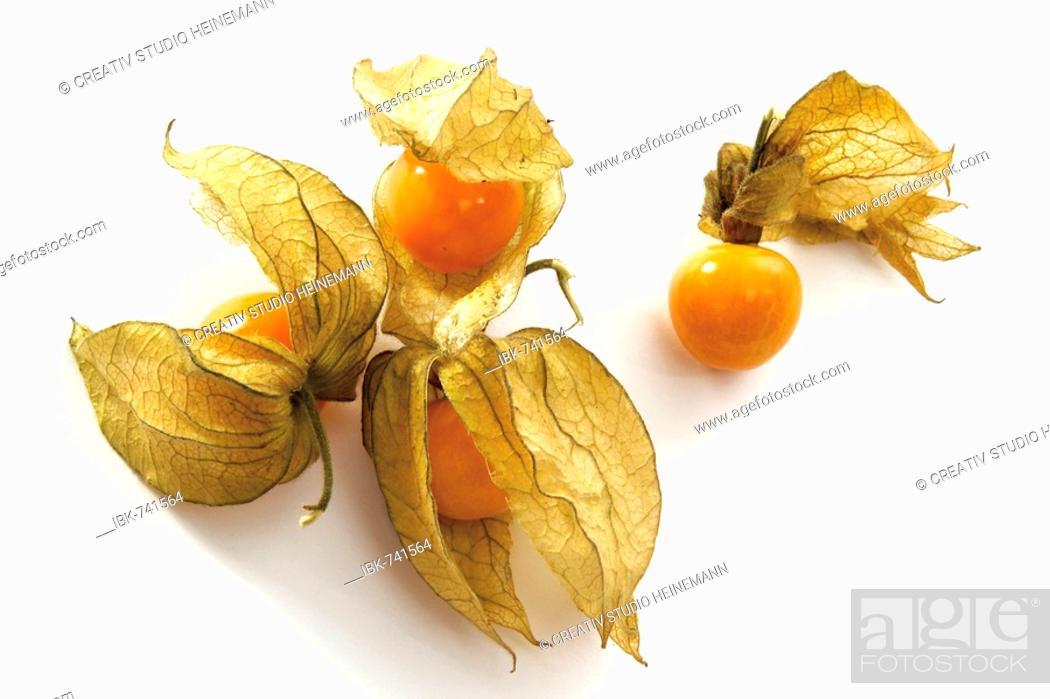 Stock Photo: Cape Gooseberries (Physalis peruviana).