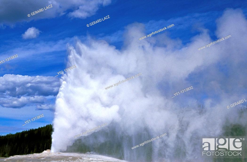 Stock Photo: GEYSER IN YELLOWSTONE NATIONAL PARK, WYOMING.