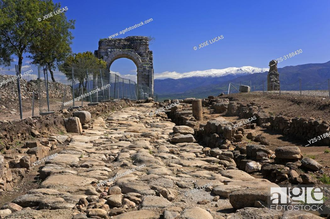 Stock Photo: Roman ruins of Caparra, Roman road and Arch cuadrifronte, Via de la Plata, Guijo de Granadilla, Caceres province, Region of Extremadura, Spain, Europe.