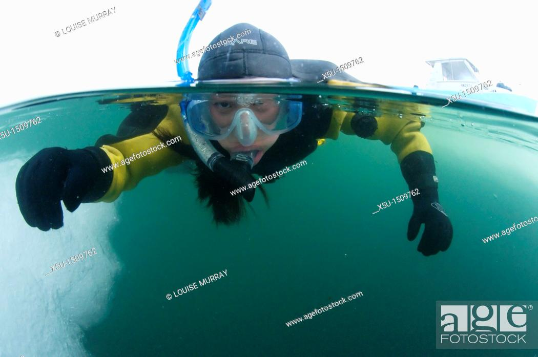 Stock Photo: Ice diving and snorkelling in the Foxe Basin, Nunavut,Canada.
