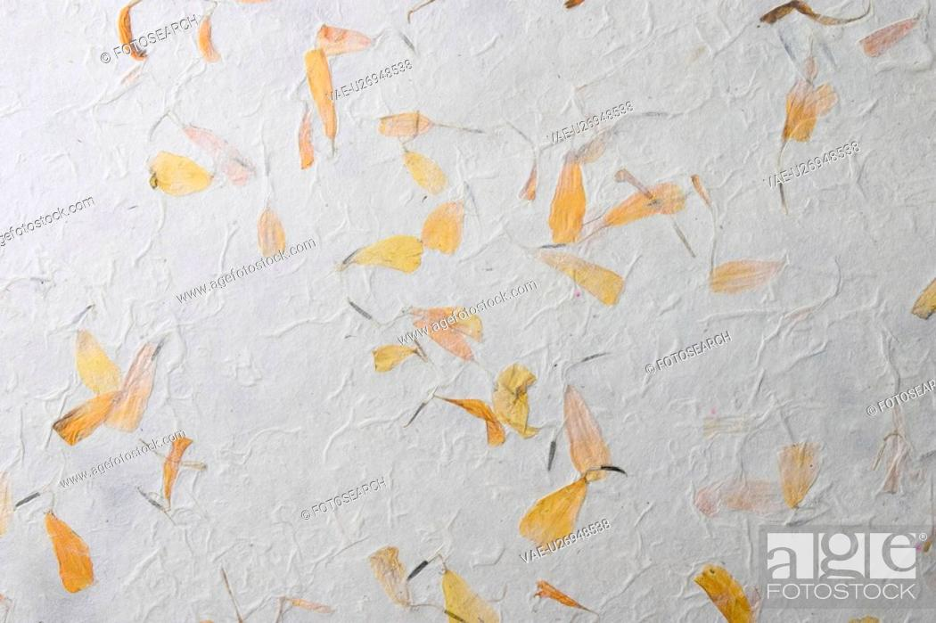 Stock Photo: background, artistic, pattern, dry flowers, appearance, art.