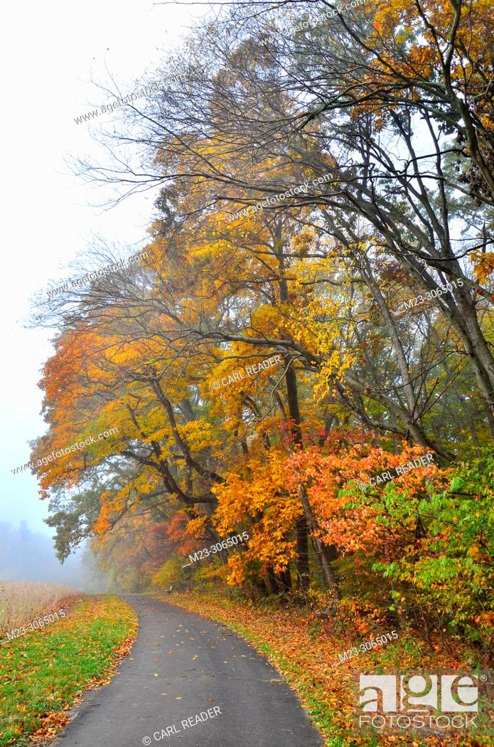 Stock Photo: A walking path skirts a colorful forest, Pennsylvania, USA.