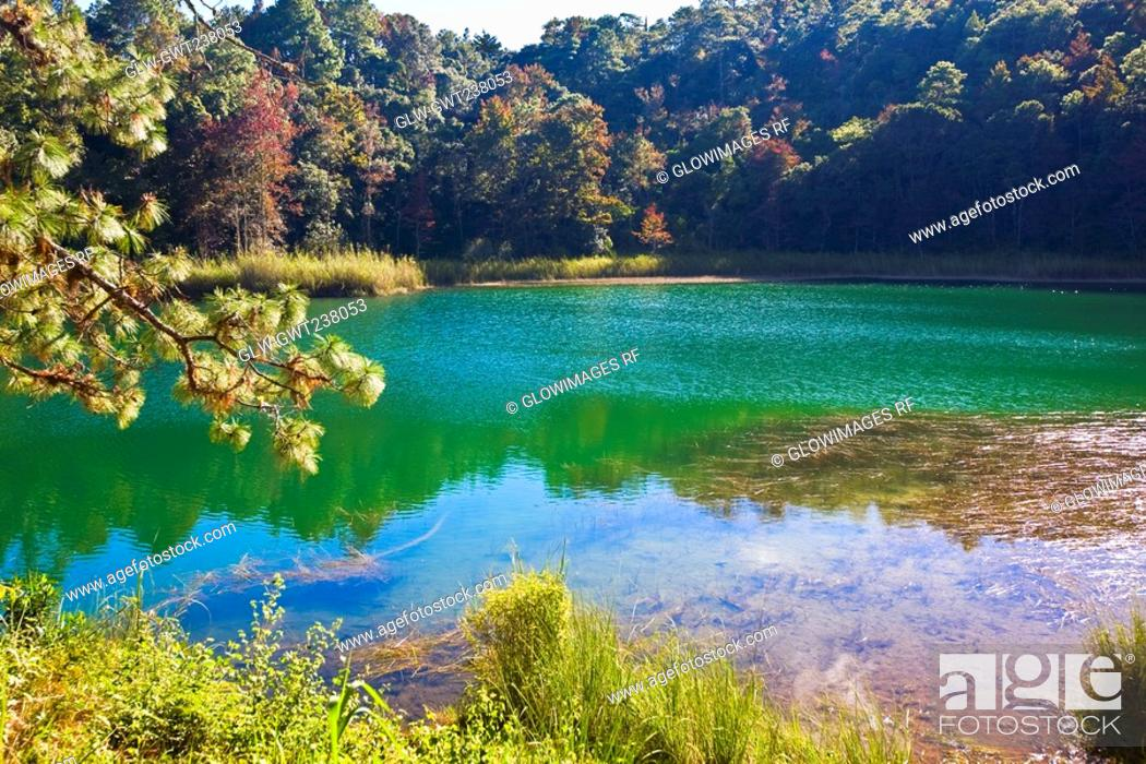 Stock Photo: Reflection of trees in water, Lagunas De Montebello National Park, Chiapas, Mexico.