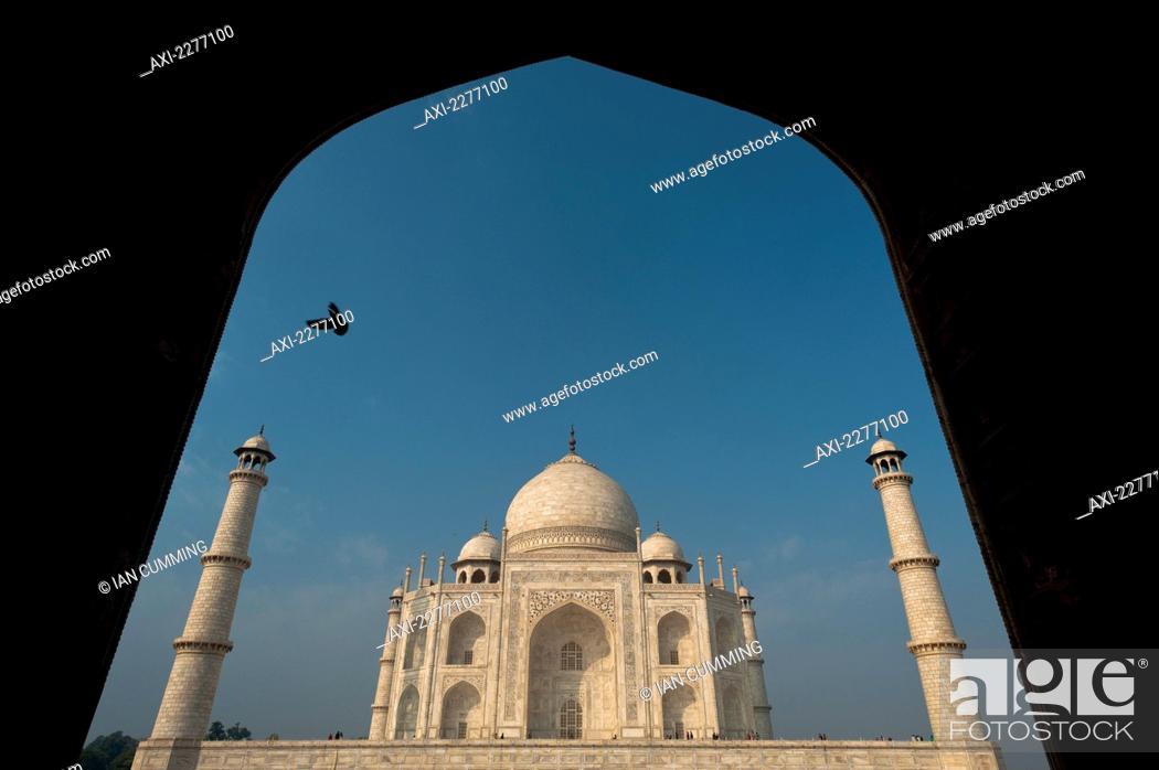 Silhouette Of Pigeon Flying Into Doorway In Front Of Taj