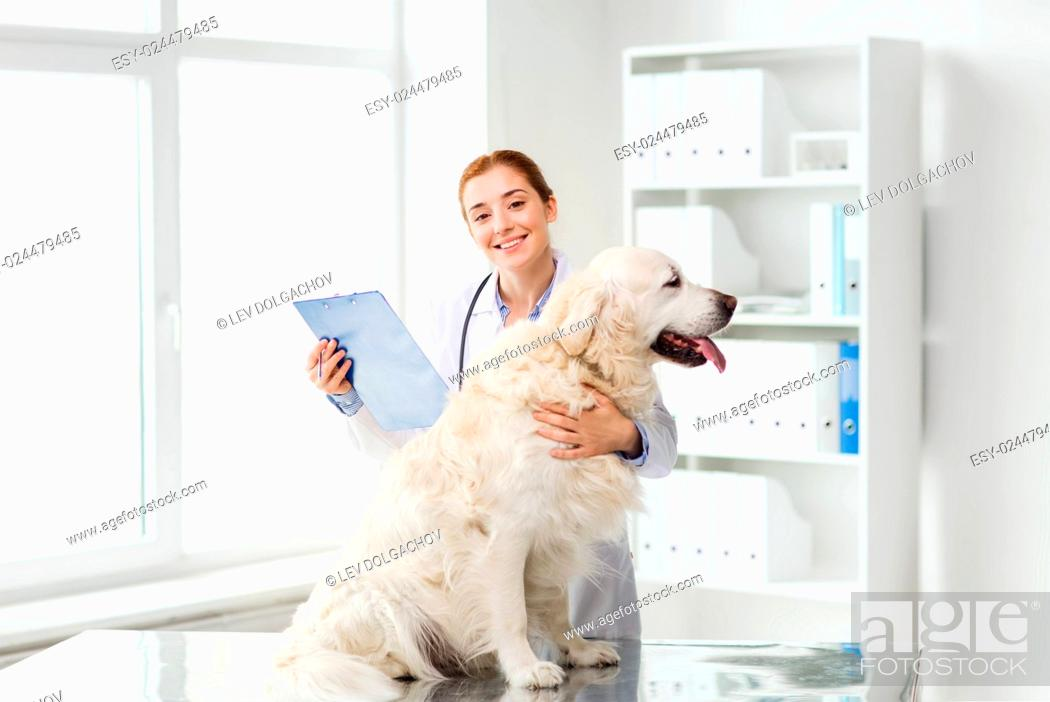 Stock Photo: medicine, pet, animals, health care and people concept - happy veterinarian or doctor with golden retriever dog and clipboard at vet clinic.