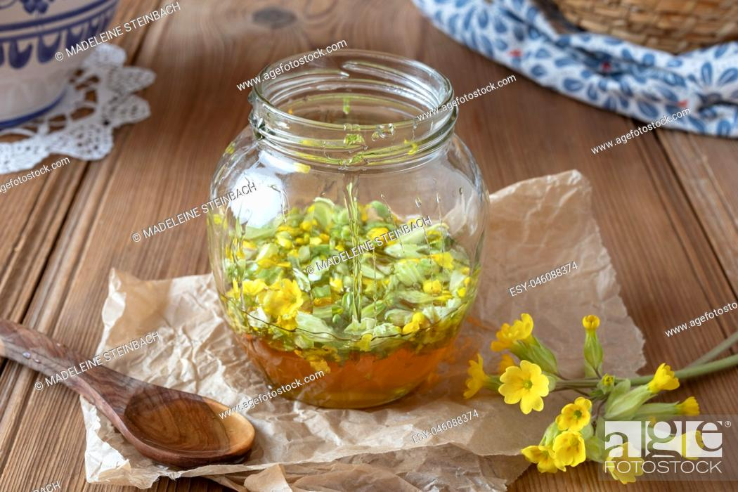 Imagen: Preparation of homemade herbal syrup from fresh primrose flowers and honey.