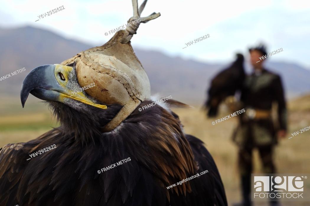 Stock Photo: Eagle hunter ( Kyrgyzstan).