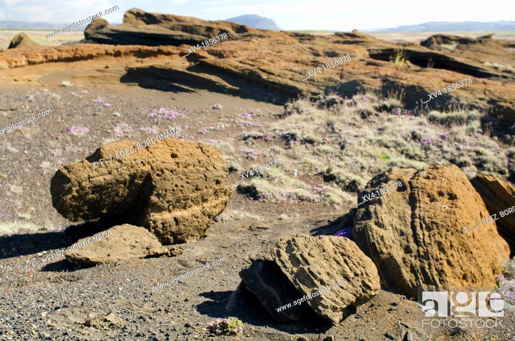 Stock Photo: Hekla vulcano area  Iceland.