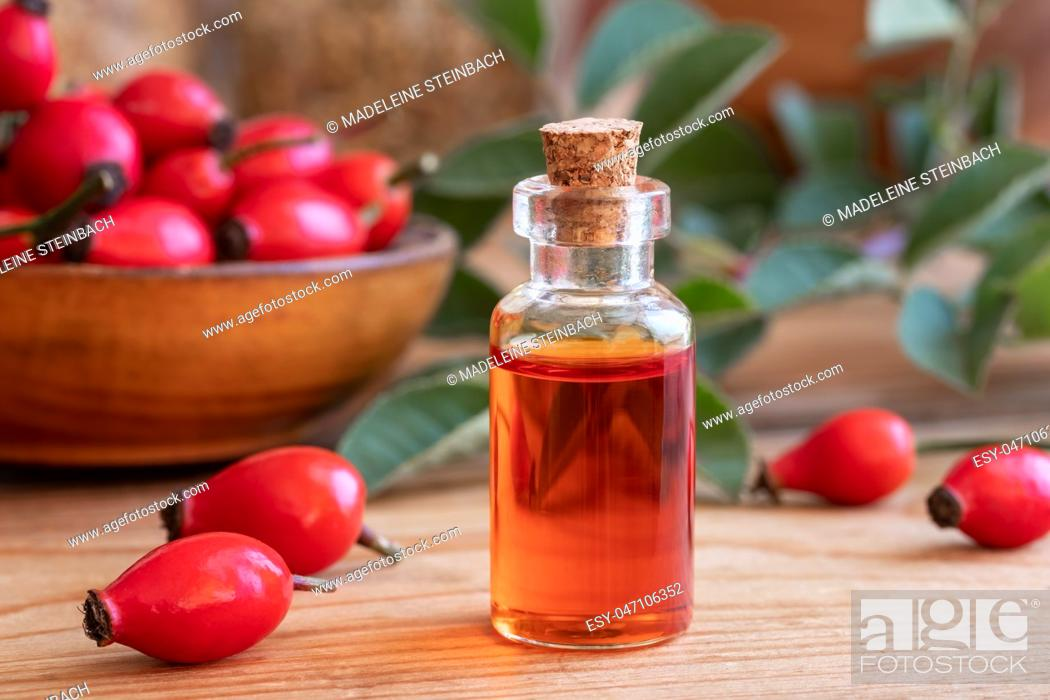 Stock Photo: A bottle of rose hip seed oil with fresh plant.